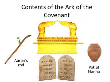 Contents of the Ark
