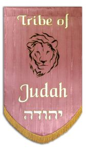 Liion of the Tribe of Judah