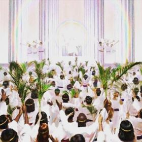 Palms and white robes